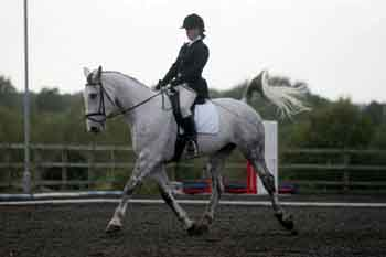 Sandra Blampied competing her horse