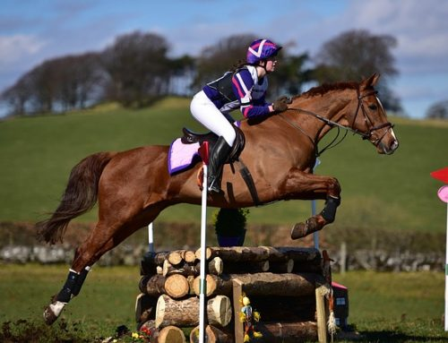 How Osteopathy could help improve your horse riding